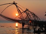 Cochin Nets.