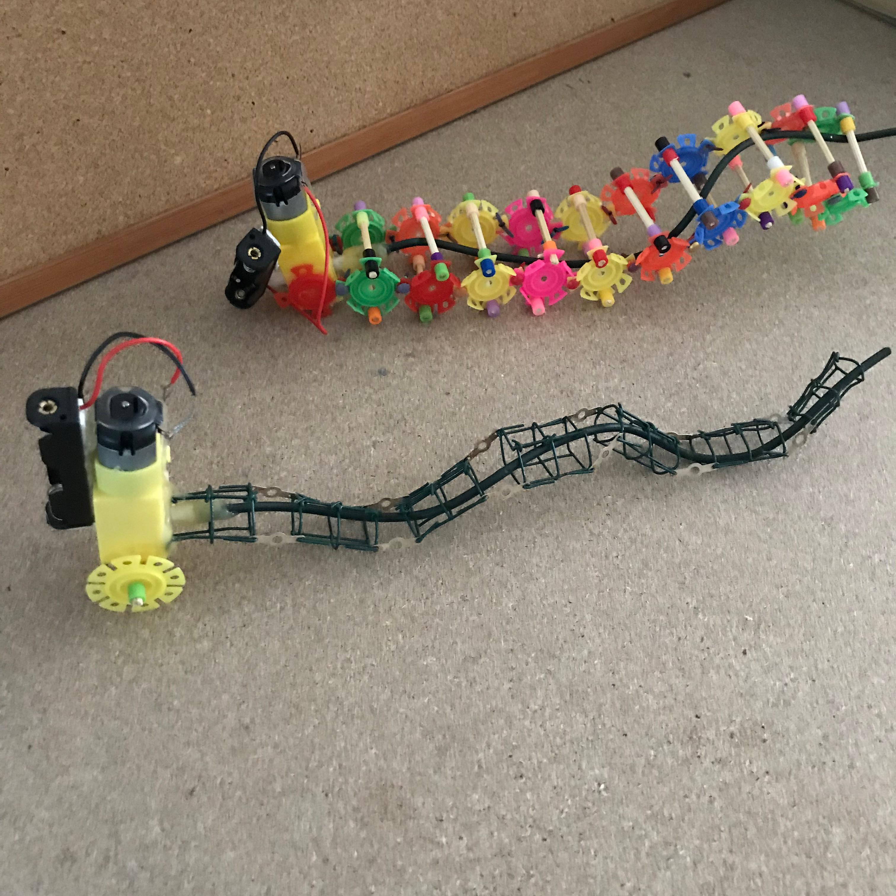 Robot   Worm.