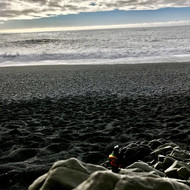 horizon noir.jpg
