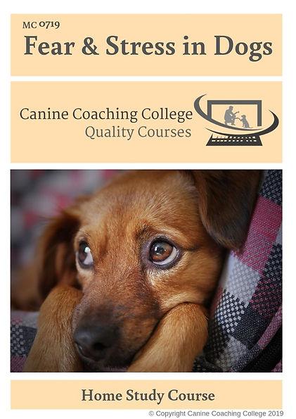 Fear & Stress in Dogs.jpg