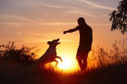 sunset play.jpg