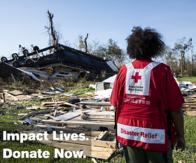Impact Lives. Donate Now graphic.png
