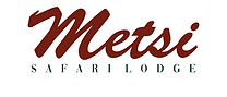 Metsi Logo.png