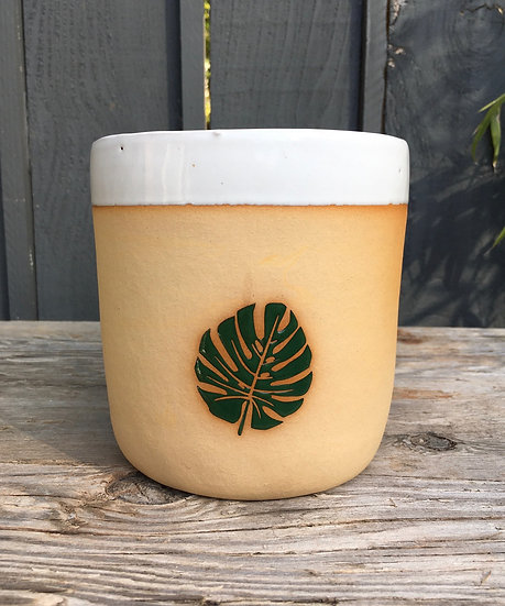 "3"", 4"" or 6"" Monstera Plant Pot"