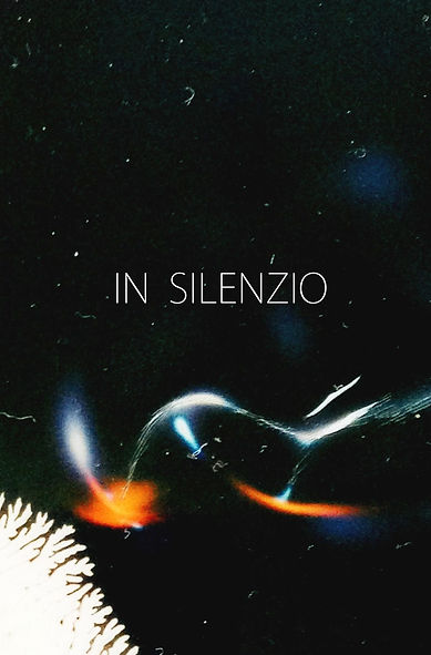 """Poster de """"In Silenzio"""" (em pós-produção), dir. Rafael Farina Issas   A Fúria Filmes produtora"""