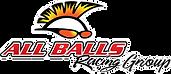 all-balls-racing-group-logo.png