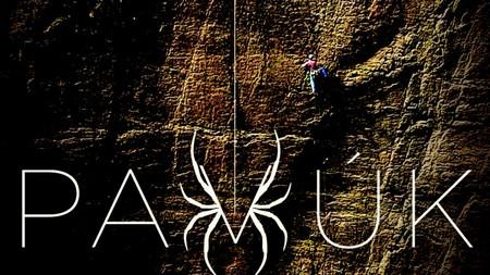 PAVÚK: horolezec storočia (2018)