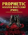 PWBC Ebook New book.jpg
