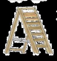 Ladder%20Edited_edited.png