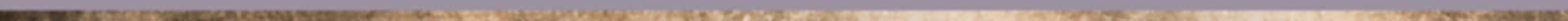 lijn paars goud nieuw.png