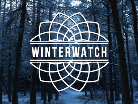 Kaleidoscope x Winterwatch