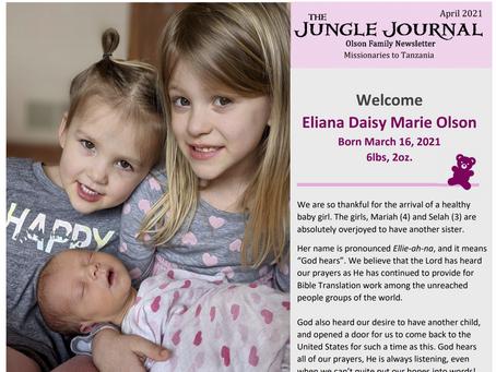 Jungle Journal - 17