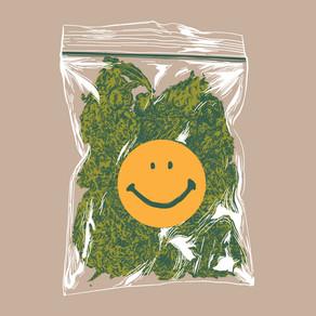 La piantiamo? Pro e contro della legalizzazione della cannabis