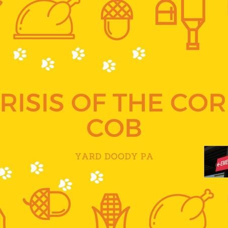 Crisis of the Corn Cob