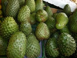 Guanabana-Soursop-fruit-Alternative-Cancer-Treatment