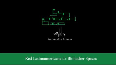 The SyntechBio Network