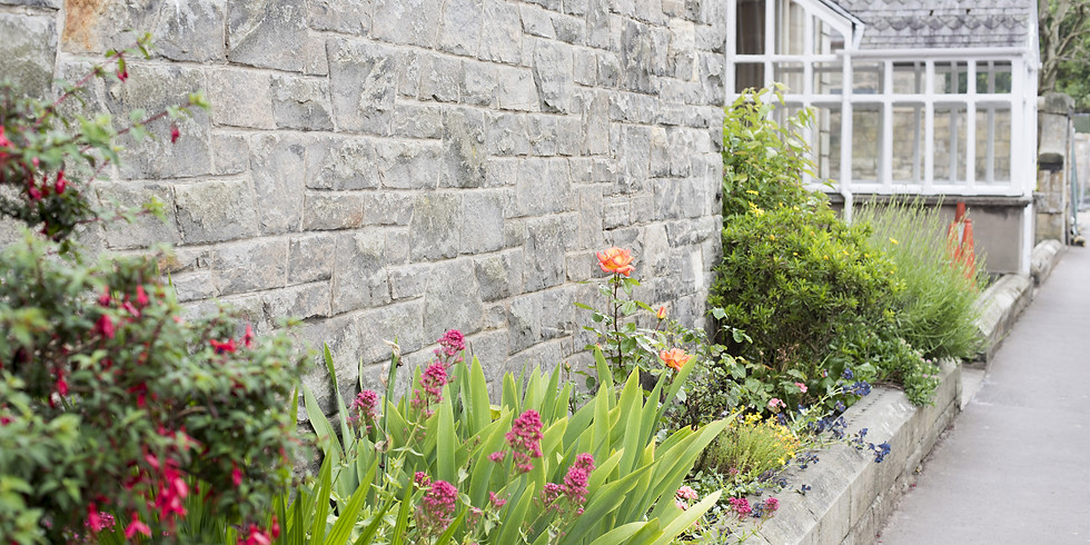 Baginton Gardeners -  In Search of a Low Maintenance Border