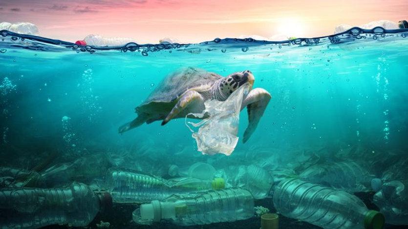 plastic-pollution-romolatavani-696x392.j
