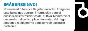 NVDI.png