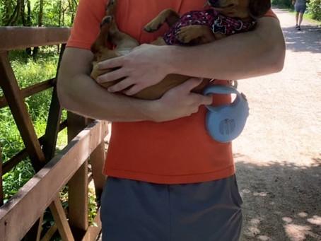 Kya Pup Get's A Lift for Her Little Legs