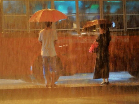 Bus Stop Monsoon