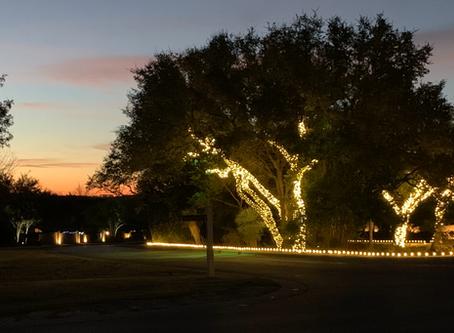 Christmas Lights-Calera at Dawn