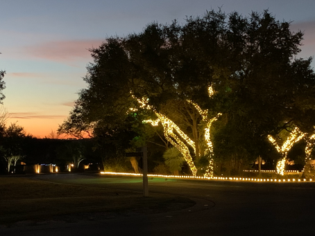 Christmas Lights-Calera at Dawn