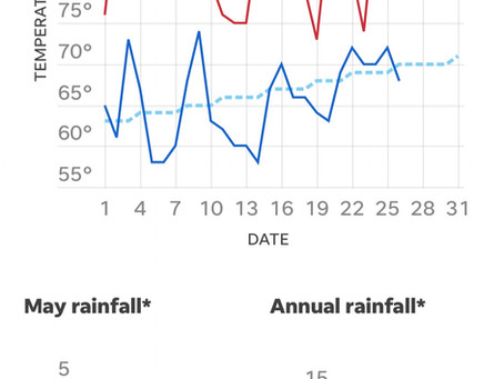 Austin Rainfall Likely Average After Friday