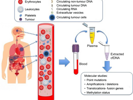 Genetic Testing in Cancer-Stage & Treat