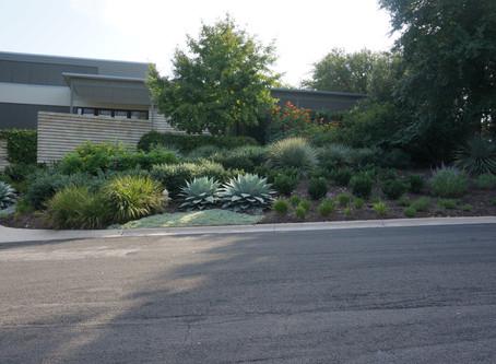 Around Austin-Westside Home & Garden
