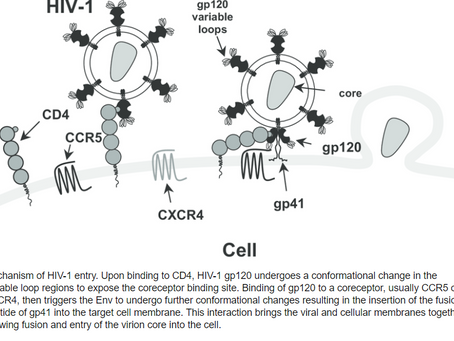 Can Moderna Repeat COVID Success with an HIV Vacccine?