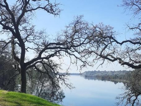 Hiking Along the American River