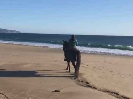 Riding on Limantour Beach