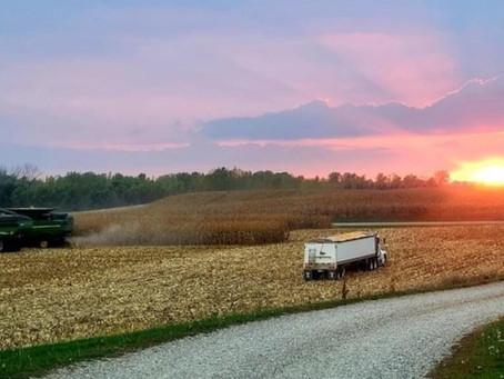 Harvest Sunset from Truman