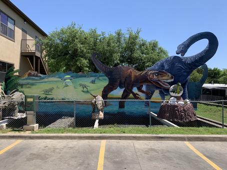 Around Austin-Jurassic Car Wash