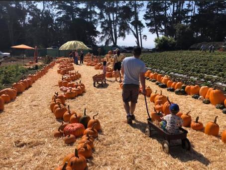 Crystal Bay Farm