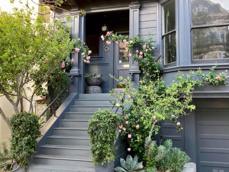 SF Home & Garden