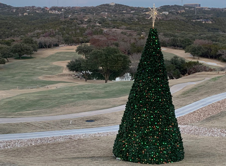 Christmas Lights-Fazio Foothills