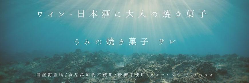 細長:海の焼き菓子 サレ.jpg