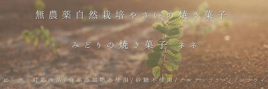 細長:みどりの焼き菓子 ネネ.jpg