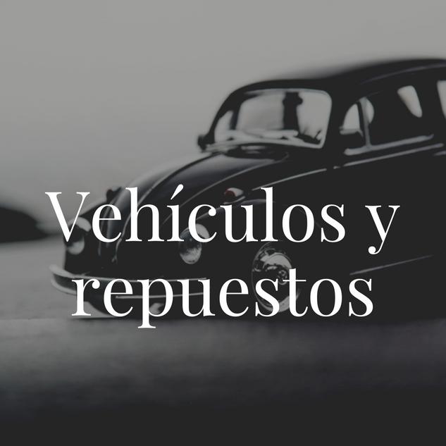 Vehículos y repuestos