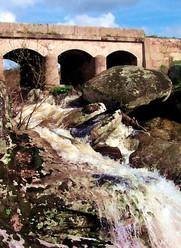 rio morgaez SOb.jpg
