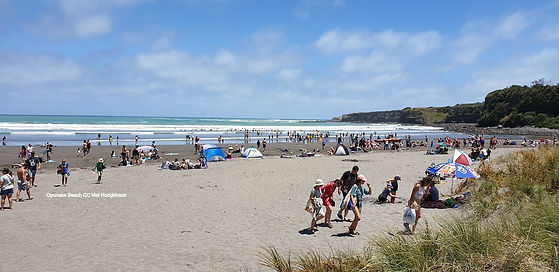 beachcarnvial_edited.jpg