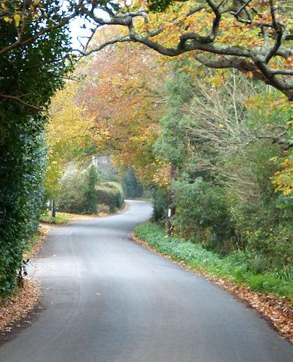 Ridgeway Lane Autumn.jpg