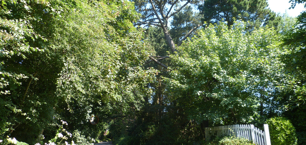 Lower Pennington Lane