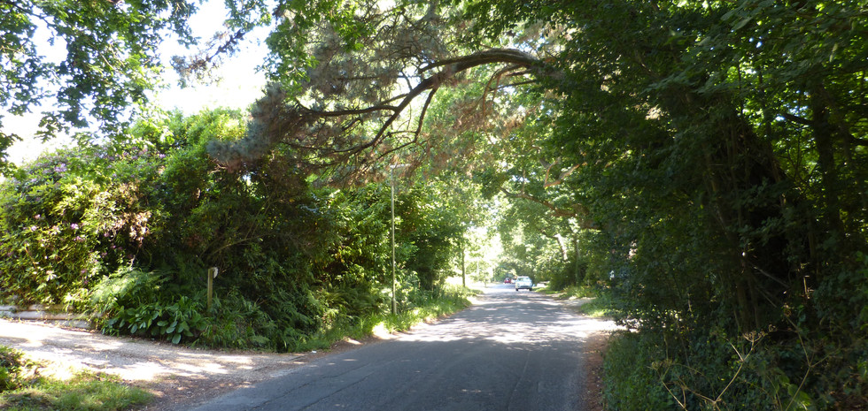 Lower Pennington Lane - minor access point into planned development
