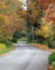 Ridgeway Lane Autumn 2.jpg