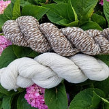 Bartels yarn picture cropped.jpg