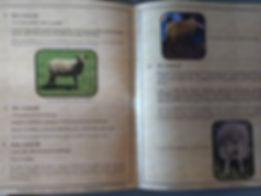 IMG_20190812_181405139 Handbook rotated.