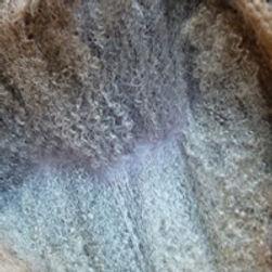 Fine Fleece Shetland Sheep